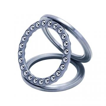 SKF Support Rollers with Flange Rings, with an Inner Ring Bearings Natr 10 12 15 17 20 25 30 35 40 50 PPA